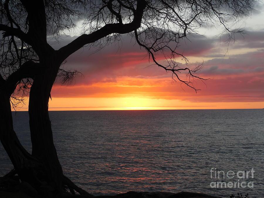 Maui Sunset Photograph - Maui Sunset by Lisa Venable