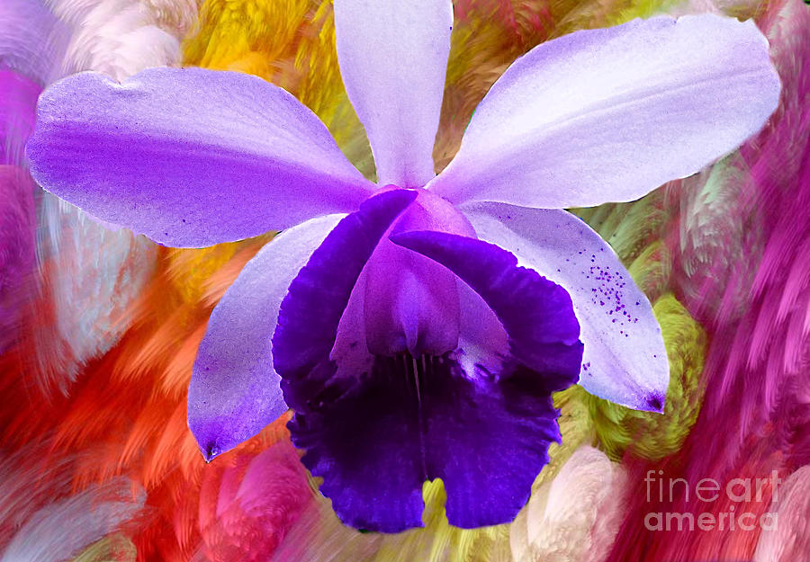 Mauve Orchid Abstract by Trudee Hunter