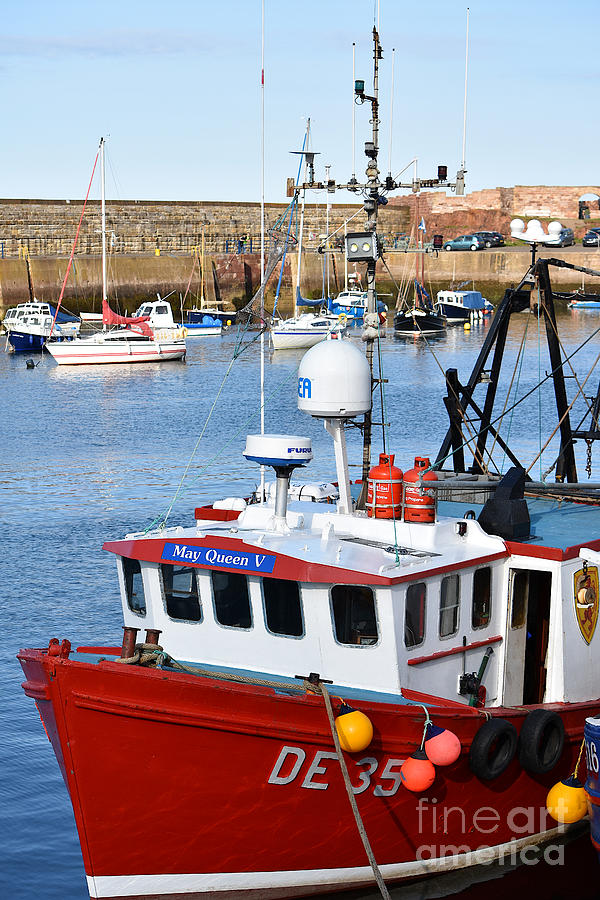 May Queen Dunbar Harbour by Yvonne Johnstone