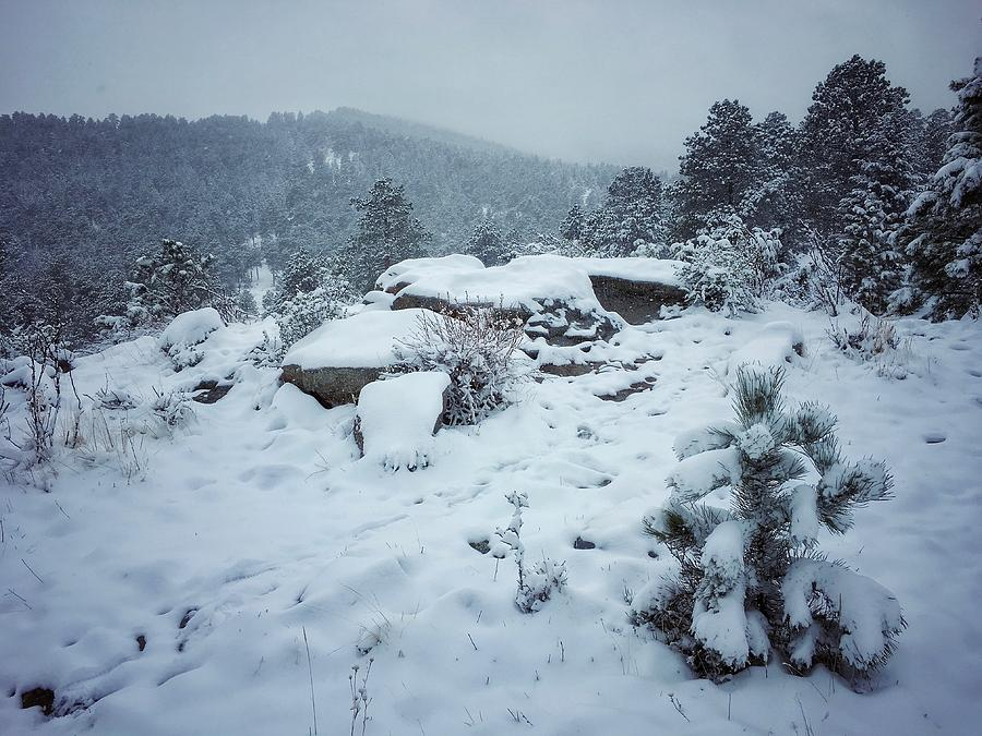 May Snowstorm in the Mountains by Dan Miller