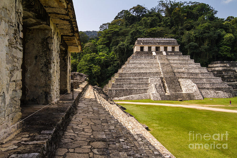 Civilization Photograph - Mayan Ruins In Palenque, Chiapas by Photoshooter2015