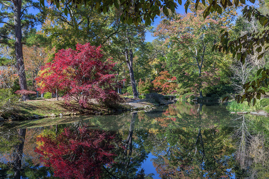 Maymont Japanese Garden Pond by Jemmy Archer