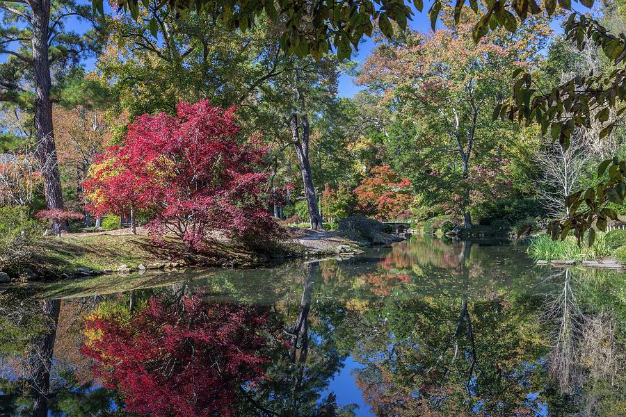 Maymont Japanese Garden Pond by Jemmy Archer