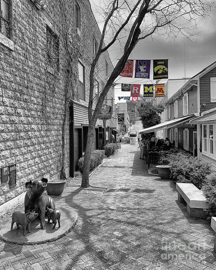 McAllister Alley  by Tom Gari Gallery-Three-Photography