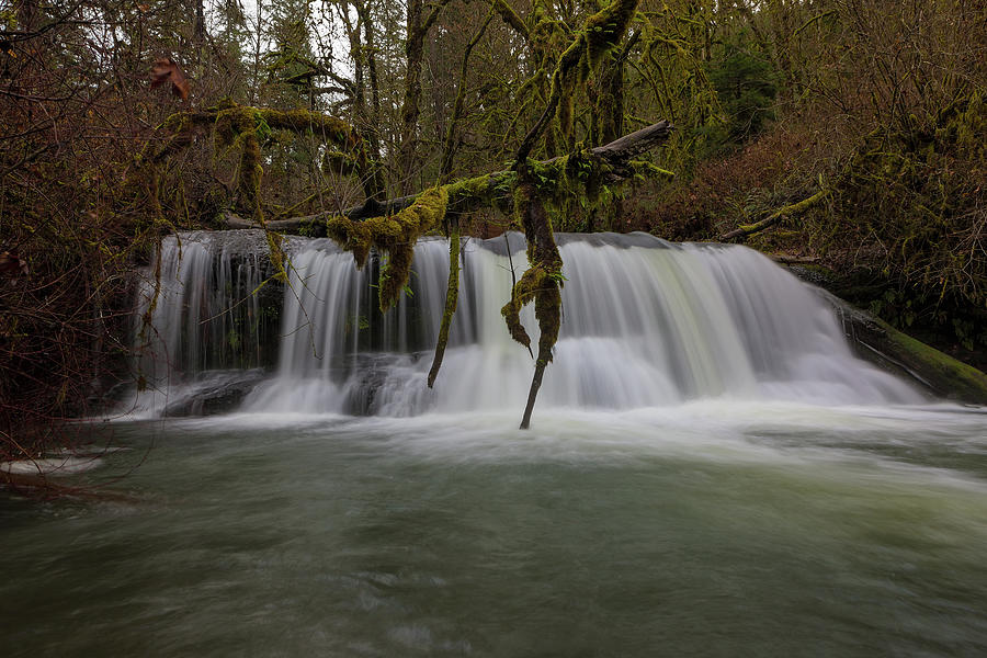 McDowell Creek Falls Closeup by David Gn