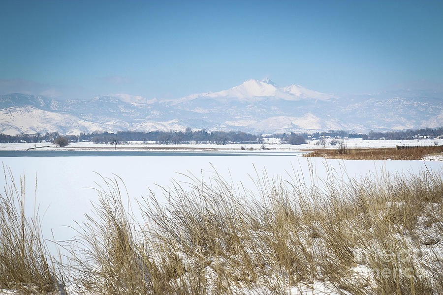 McIntosh Lake Longmont CO by Veronica Batterson