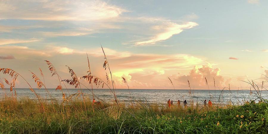 Medeira Beach B by Steve Sperry
