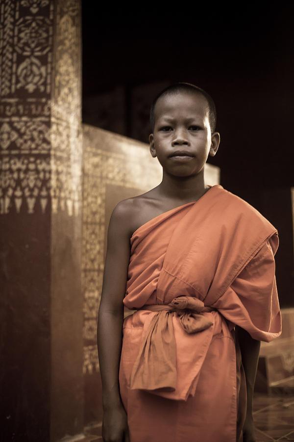 Elephant Photograph - Meditation by Felipe Queriquelli