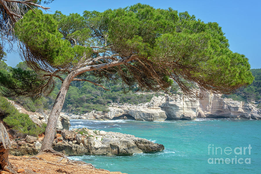 Mediterranean Landscape In Menorca Photograph By Delphimages Photo