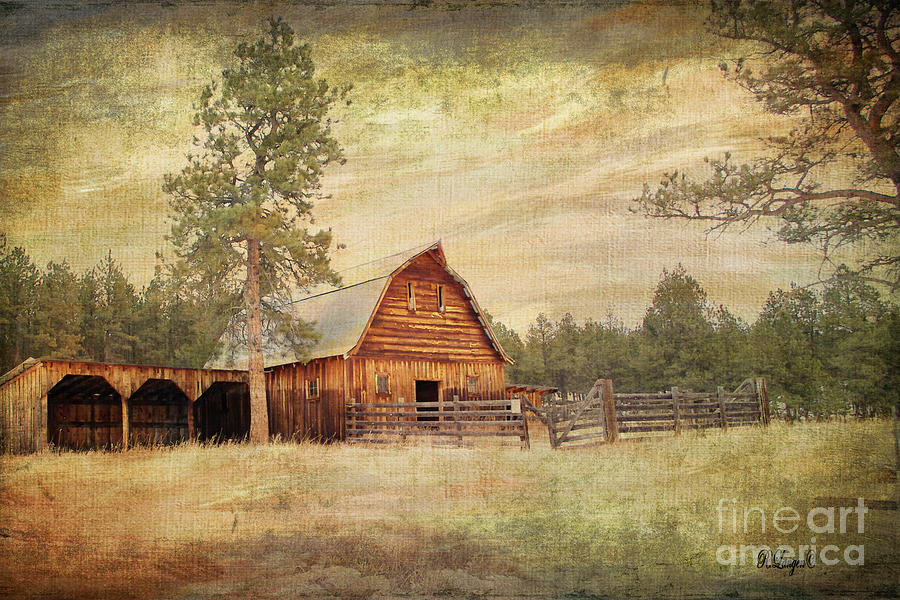 Meeker Ranch  by Rebecca Langen