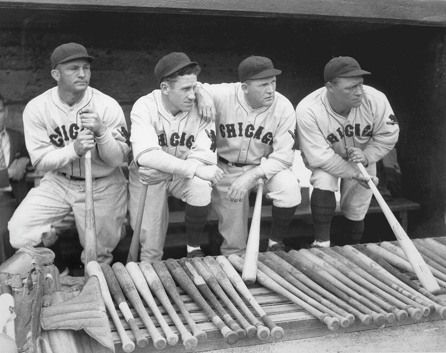 Members Of The Chicago Cubs Photograph by Chicago History Museum