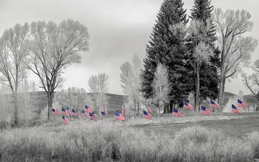 Memorial day by Lisa Malecki