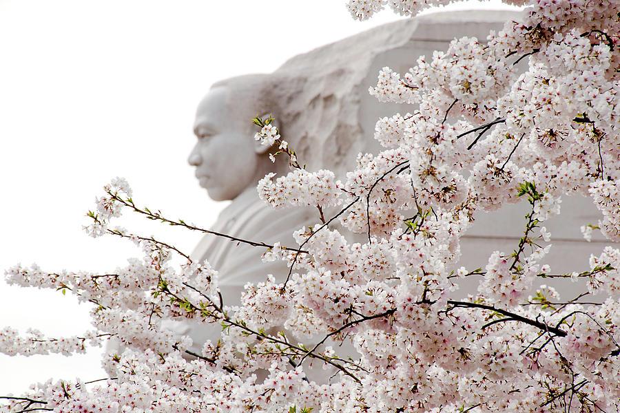 Memorial by Greg Fortier