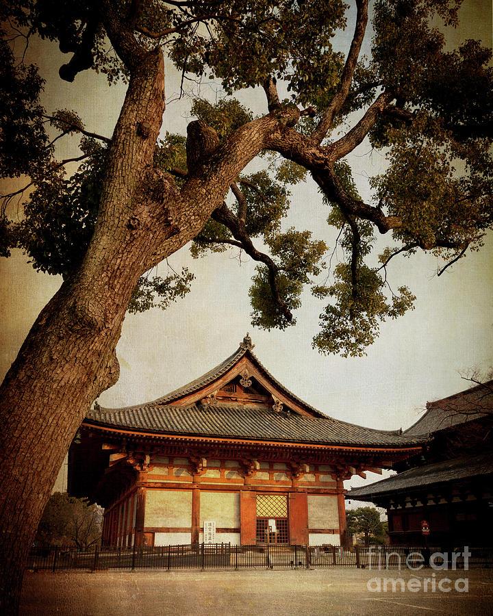 Memories of Japan 3 by RicharD Murphy