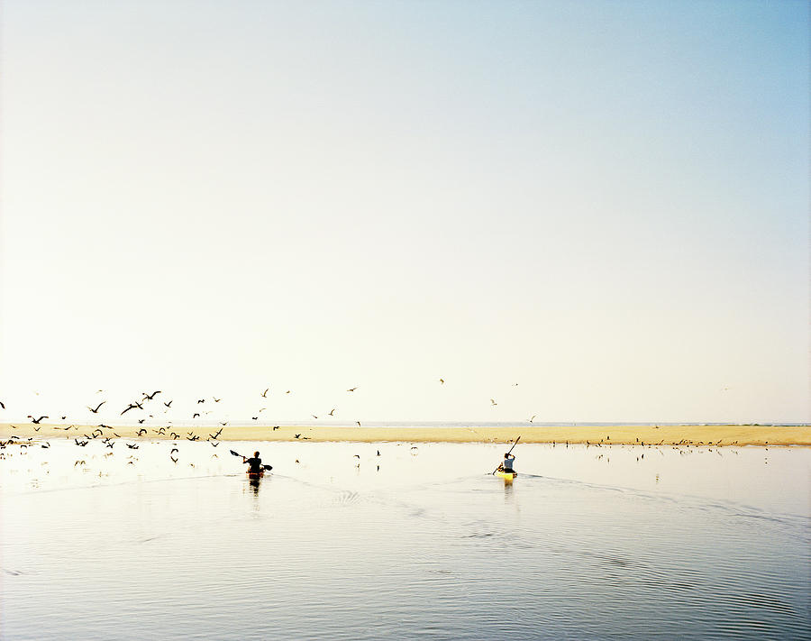 Men Paddling Kayaks To The Beach Photograph by Julien Capmeil
