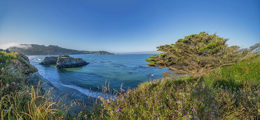 Mendocino Coastal Bluffs by Jonathan Hansen