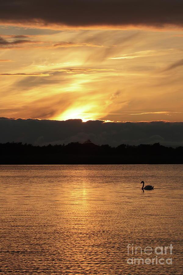 Menlo Sunset 1 by Peter Skelton