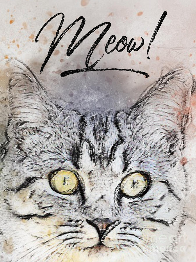 Cat Head Mixed Media - Meow Cat by PurrVeyor Com