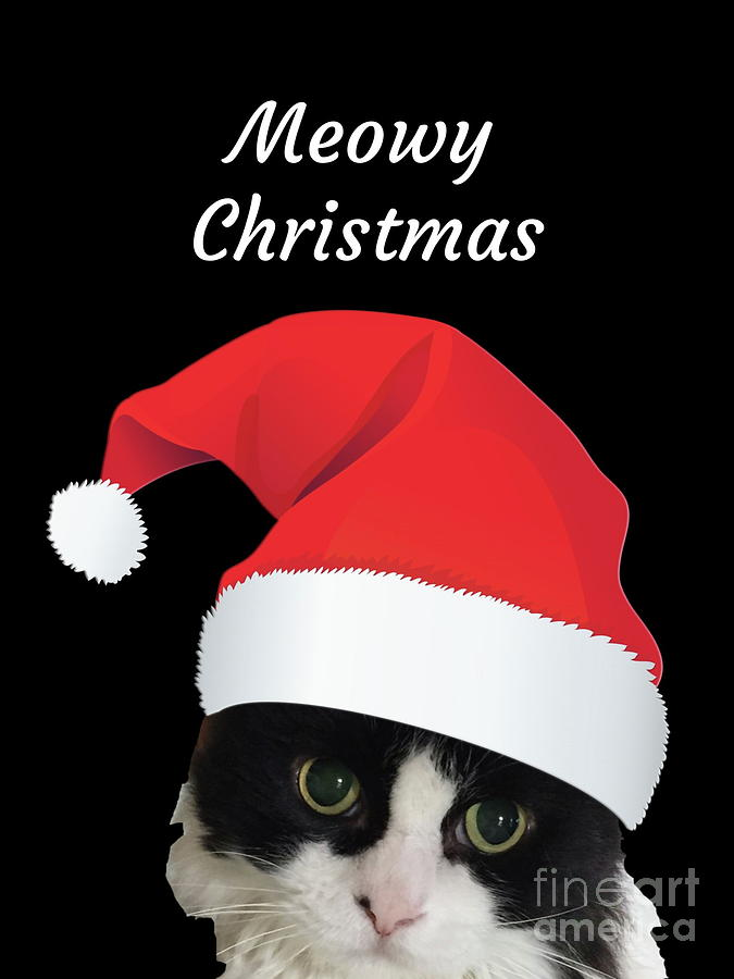 Meowy Christmas by Marti Magna
