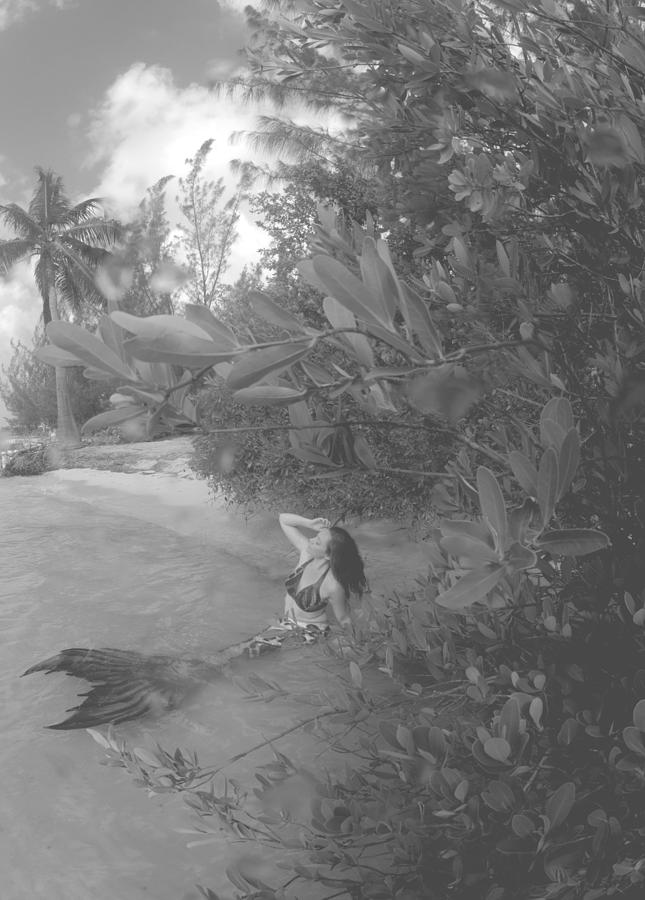 Mermaid Photograph - Mermaid Island by Todd Hummel