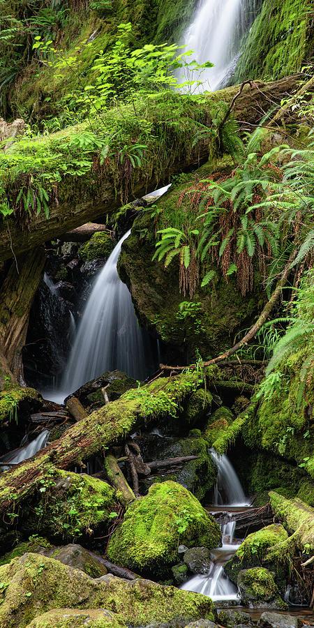 Merriman Falls by Adam Pender