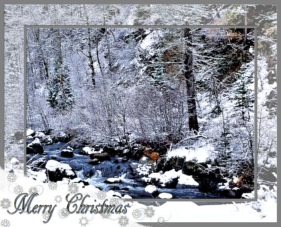Merry Christmas  by Susan Kinney