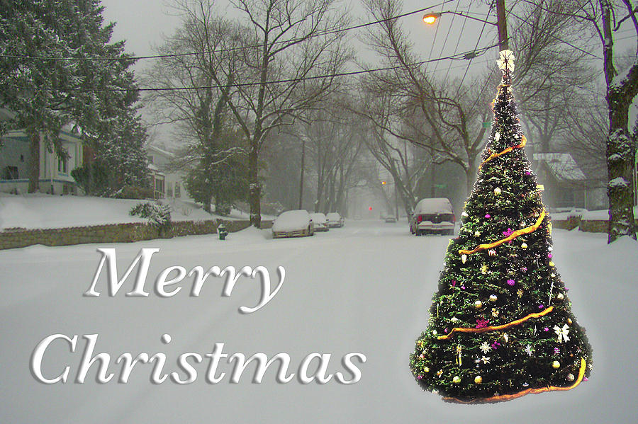 Merry Christmas Tree in Snow by MARVIN BOWSER