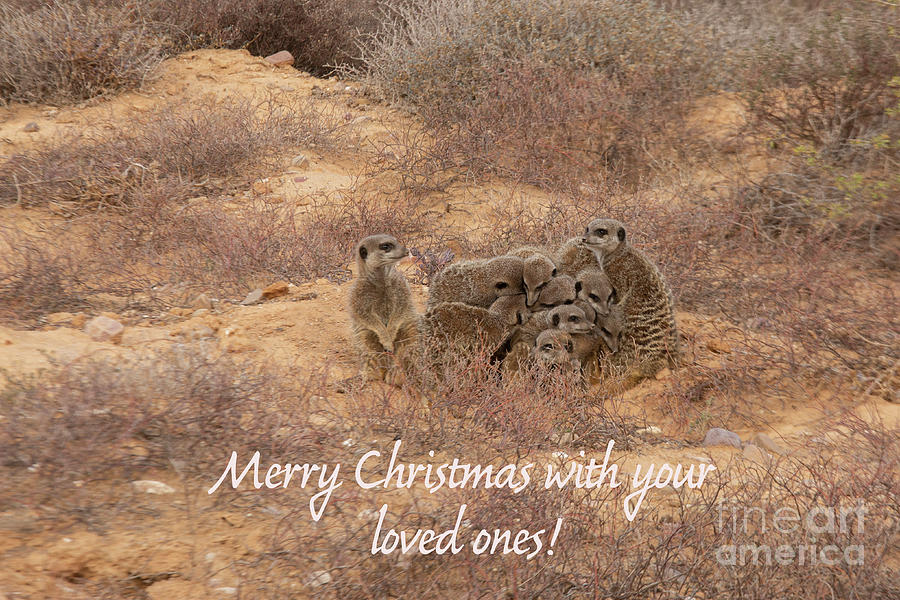 Merry Christmas with your loved ones by Patricia Hofmeester
