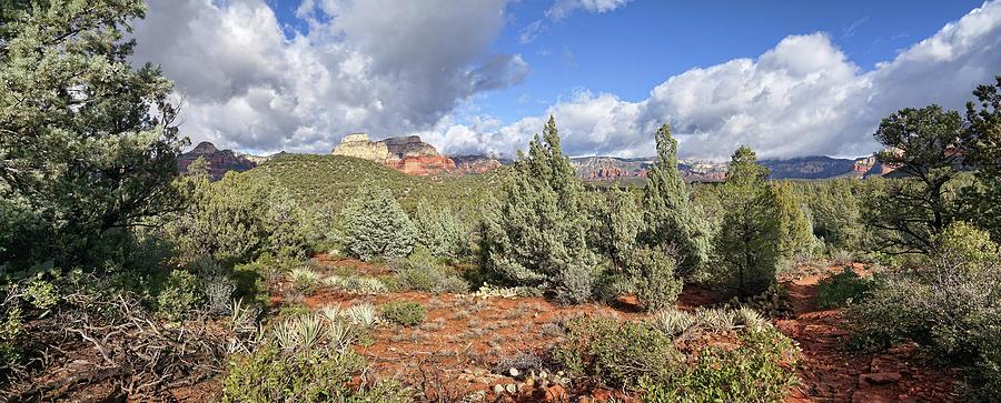 Mescal Trail Panorama by Leda Robertson