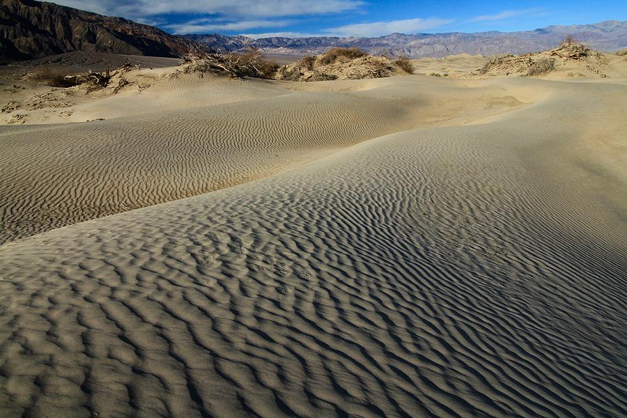 Mesquite Flat Sand Dunes by Ed  Riche