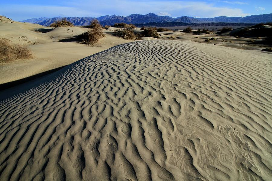 Mesquite Flat Sand Dunes Grapevine Mountains by Ed  Riche