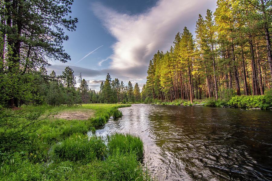 Metolius River Evening by Matthew Irvin
