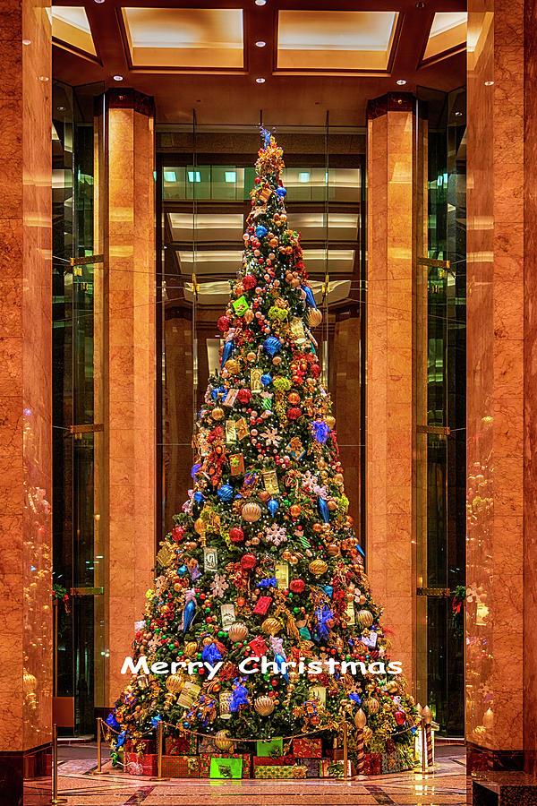 Metropolitan Square Christmas Tree-GRK1370_12072018 by Greg Kluempers