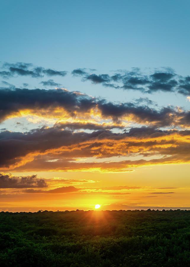 Mexico Sunset Portrait by Dave Matchett