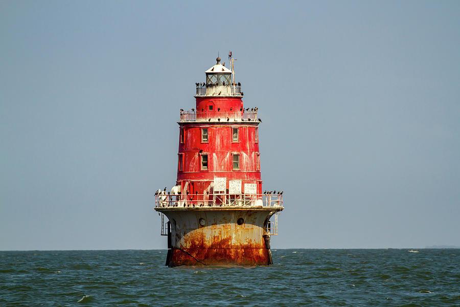 Miah Maull Shoal Lighthouse with cormorants by Karen Foley