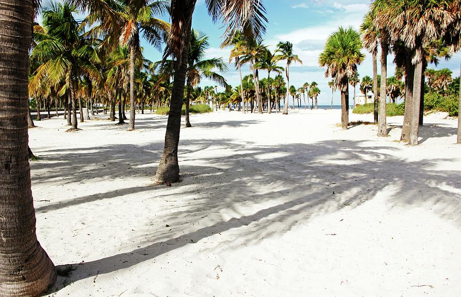 Miami beach by Jackie Mestrom