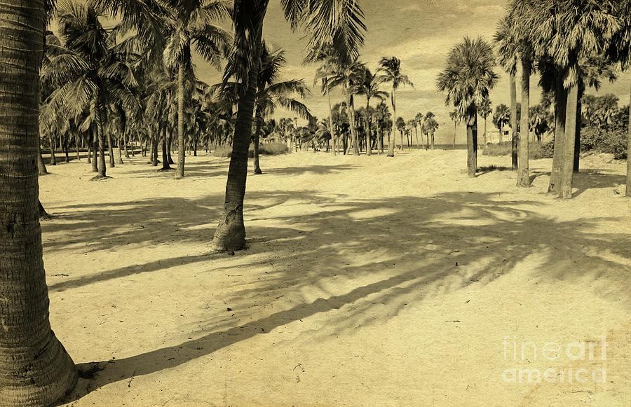 Miami Beach Vintage by Jackie Mestrom