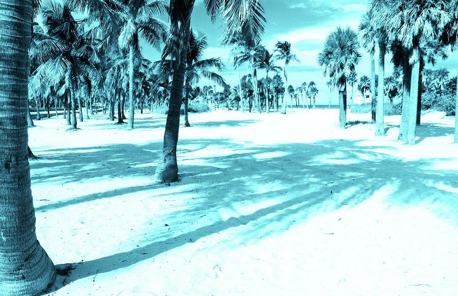 Miami beaches Blues by Jackie Mestrom
