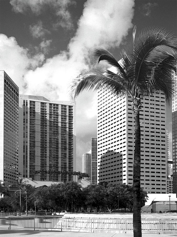 Park Photograph - Miami Downtown 071903 by Rudy Umans