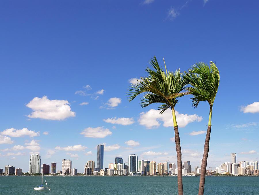 Miami Skyline Photograph by Thepalmer