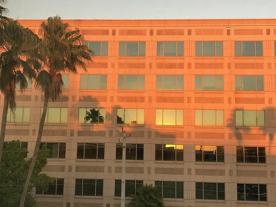 Miami Sunset Shadows Photograph