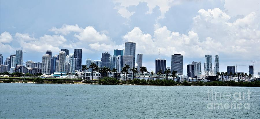Miami9 by Merle Grenz