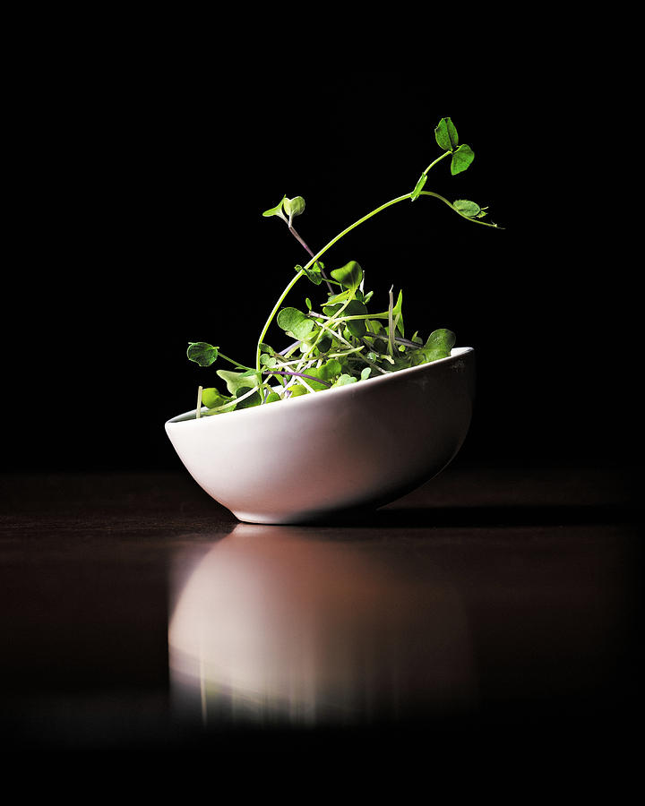 Micro Greens by Jake Sorensen