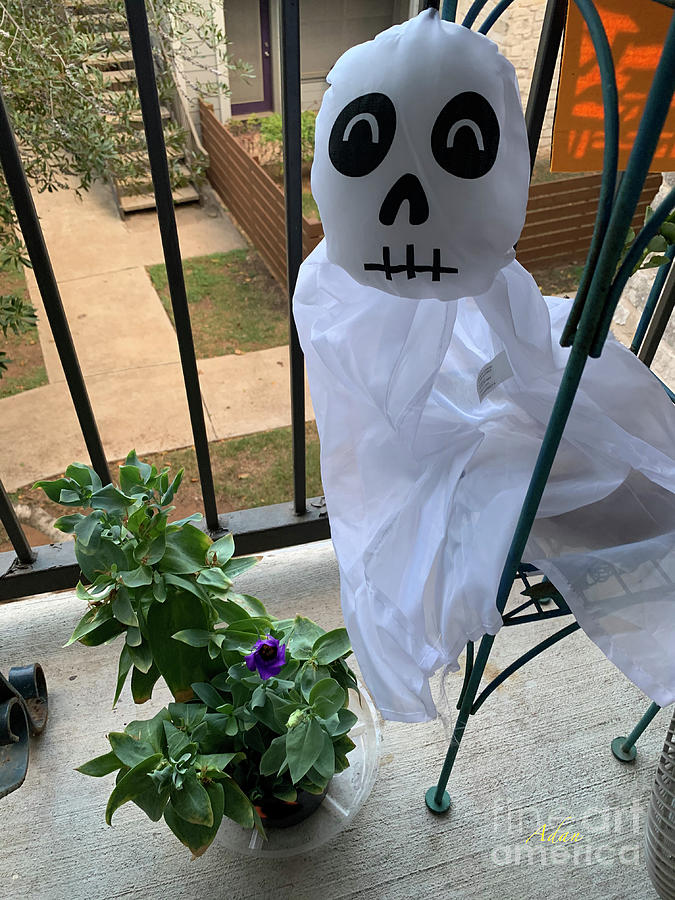 Mid-October Halloween Guest by Felipe Adan Lerma