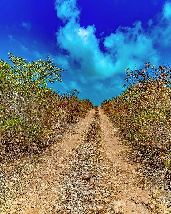 Caribbean Photograph - Middle Caicos Rocky Road by Betsy Knapp