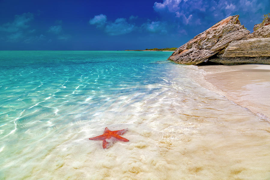 Starfish Photograph - Middle Caicos Tranquility Awaits by Betsy Knapp