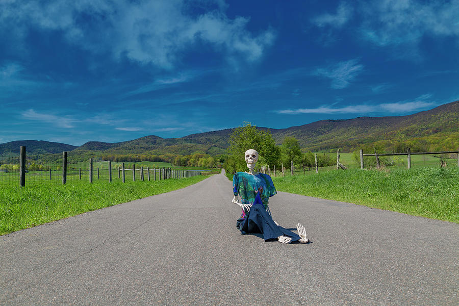 Human Photograph - Middle Of The Road by Betsy Knapp