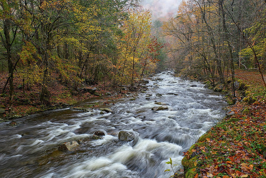 Middle Prong Little River by Bill Chambers