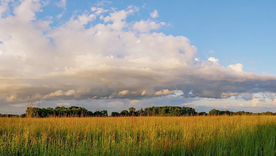 Midewin Prairie Panorama by Todd Bannor