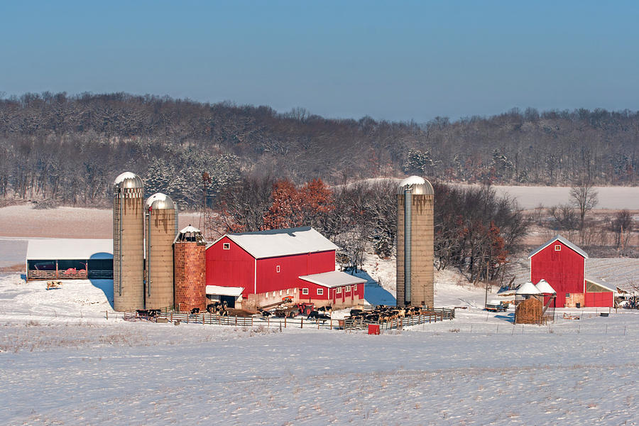 Dairy Farm Photograph - Midwestern Dairy by Todd Klassy